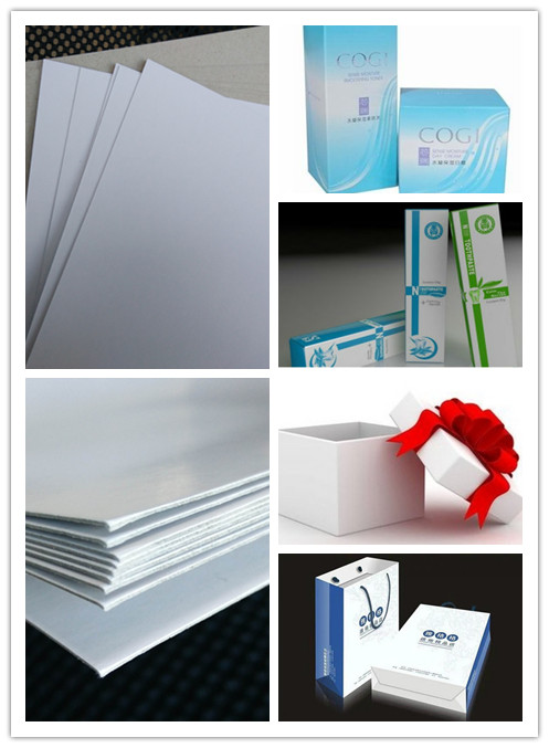 Packing / Printing used 250gsm Duplex Board Paper in Sheet or Reel