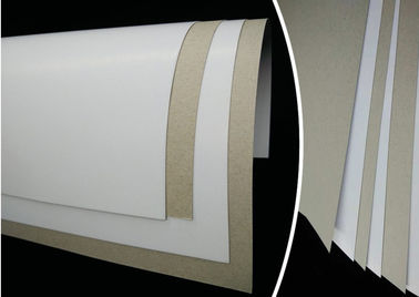 China 6% - 8% Moisture Smooth Duplex Paper Board White Coated Grey Back Offset Printing supplier