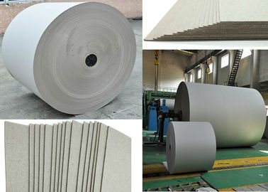 China 670gsm Grey Paper Roll for printing industry / bottled water plate / statinery / boxes factory
